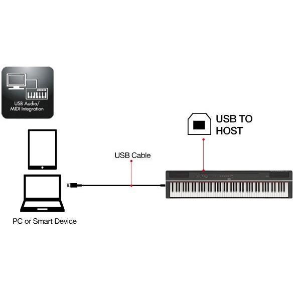 P125WH PIANO DIGITALE