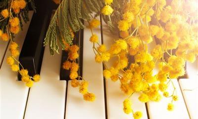 La Musica è Donna: 8 Marzo 2019