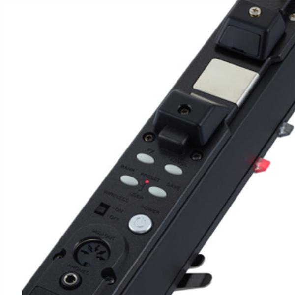 EWI 5000 PROFESSIONAL SAX DIGITALE
