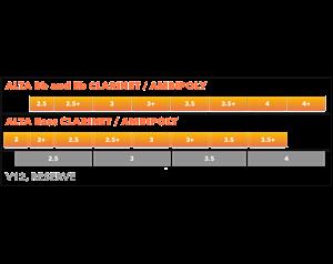 AMBIPOLY VIVACE 2.5+ CLARINETTO SIB