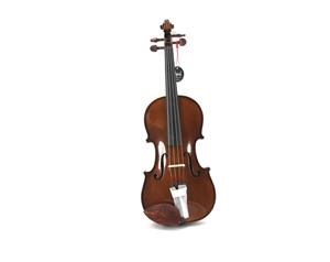 VL4100 ALLIEVO I VIOLINO 4/4 CON CUSTODIA