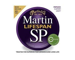 MSP6050 LIFESPAN 80/20 BRONZE