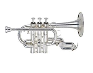 Pt610s Trombino Silver Plated