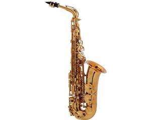 Reference 54 Dgg Sax Contralto Con Astuccio