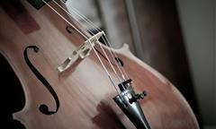Violoncello: da viola da braccio a strumento solista