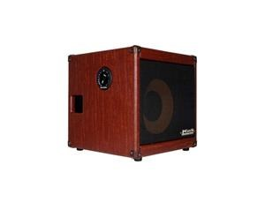 AC 101 H ACOUSTIC AMPLIFIER COMBO